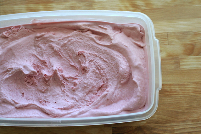 Raspberry Ice Cream 093
