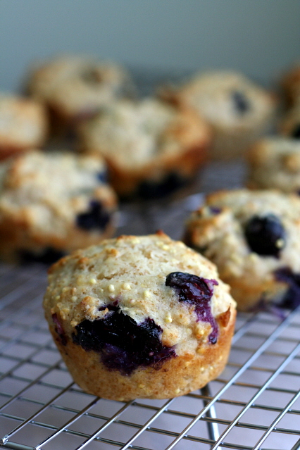 Honey Blueberry Millet Muffins