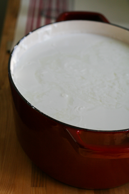 Creamy Chevre_