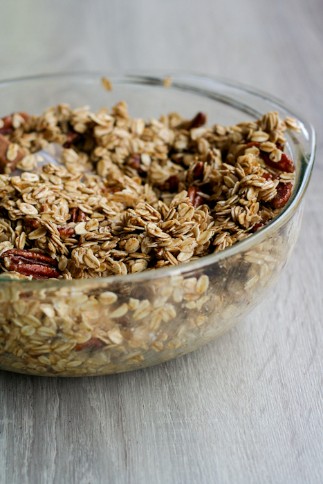Cranberry Spicy Clumpy Granola-12