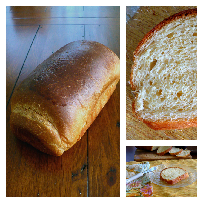 Brown butter Brioche Collage